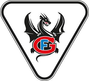 FG_LogoDRAGON_Fond_Clair